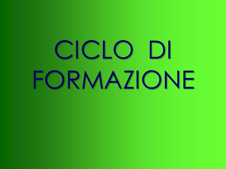 CICLO DI FORMAZIONE
