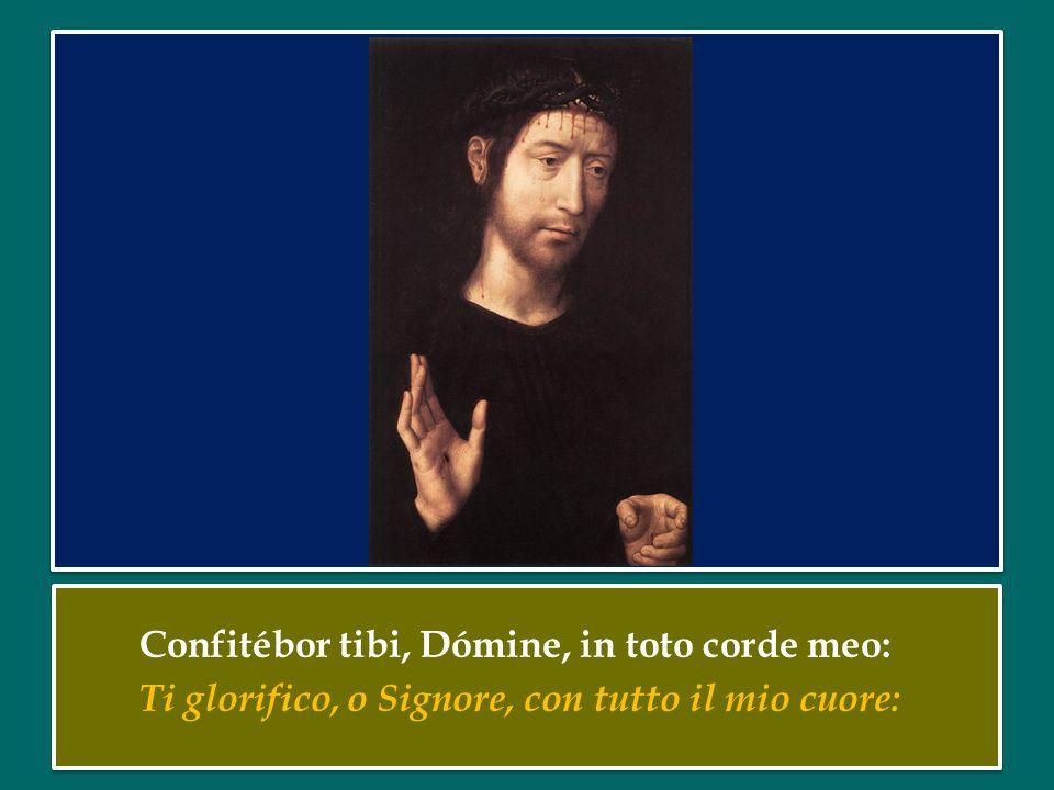 Confitébor tibi, Dómine, in toto corde meo: Ti glorifico, o Signore, con tutto il mio cuore: