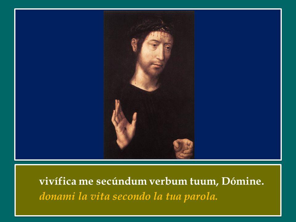 vivífica me secúndum verbum tuum, Dómine