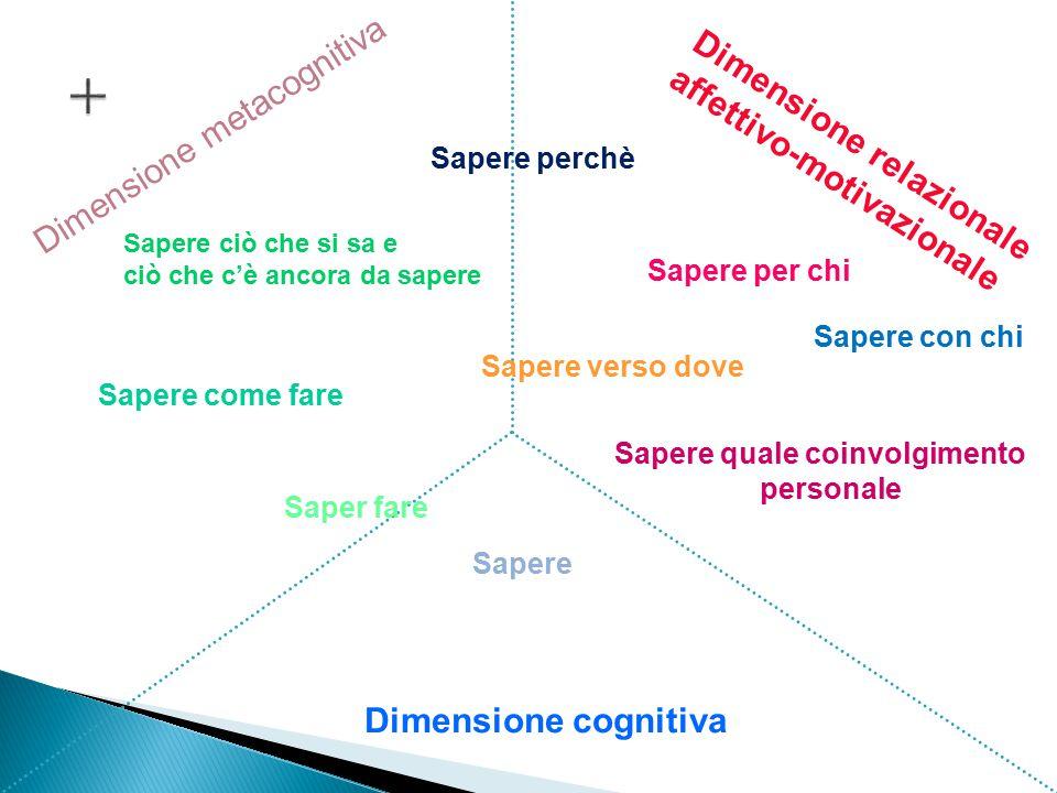 + Dimensione metacognitiva Dimensione relazionale