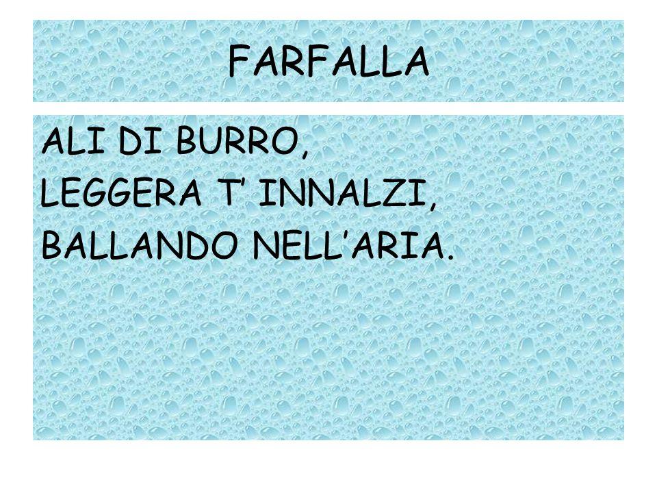 FARFALLA ALI DI BURRO, LEGGERA T' INNALZI, BALLANDO NELL'ARIA.