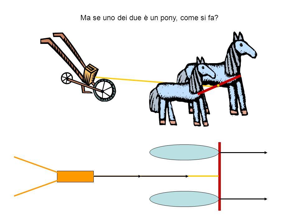 Ma se uno dei due è un pony, come si fa