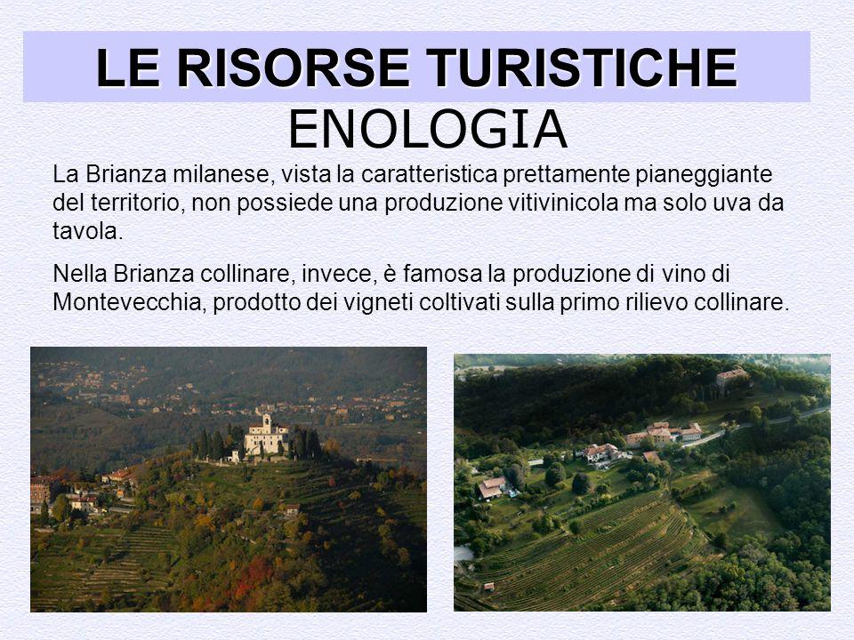 LE RISORSE TURISTICHE ENOLOGIA ENOLOGIA