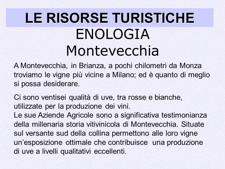 LE RISORSE TURISTICHE ENOLOGIA ENOLOGIA Montevecchia