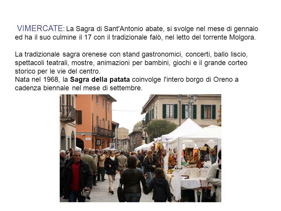 VIMERCATE: La Sagra di Sant Antonio abate, si svolge nel mese di gennaio ed ha il suo culmine il 17 con il tradizionale falò, nel letto del torrente Molgora.