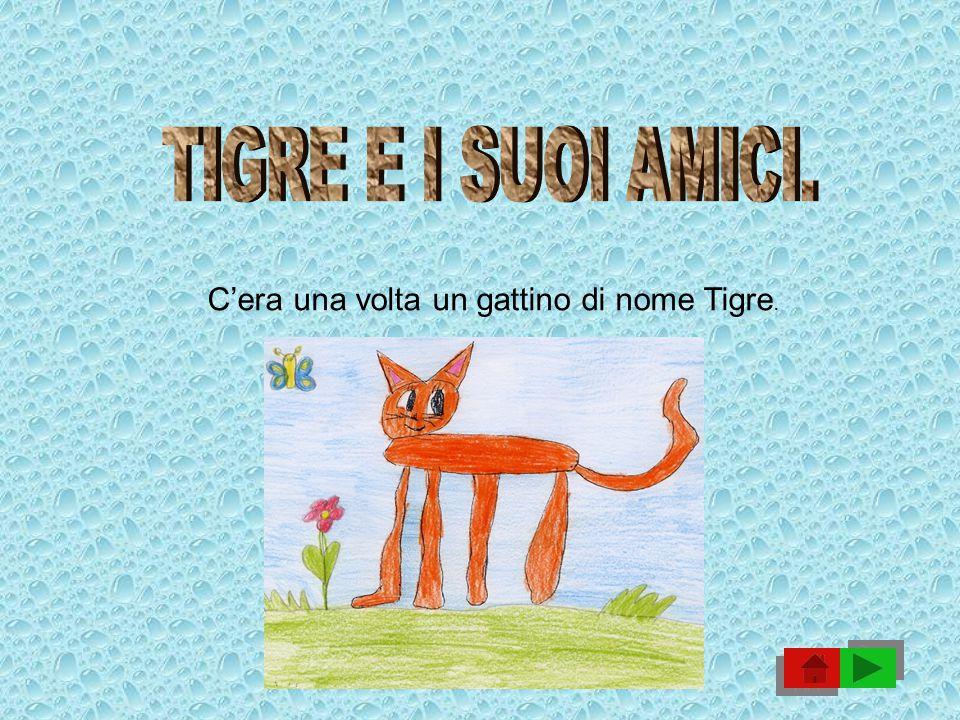 TIGRE E I SUOI AMICI. C'era una volta un gattino di nome Tigre.