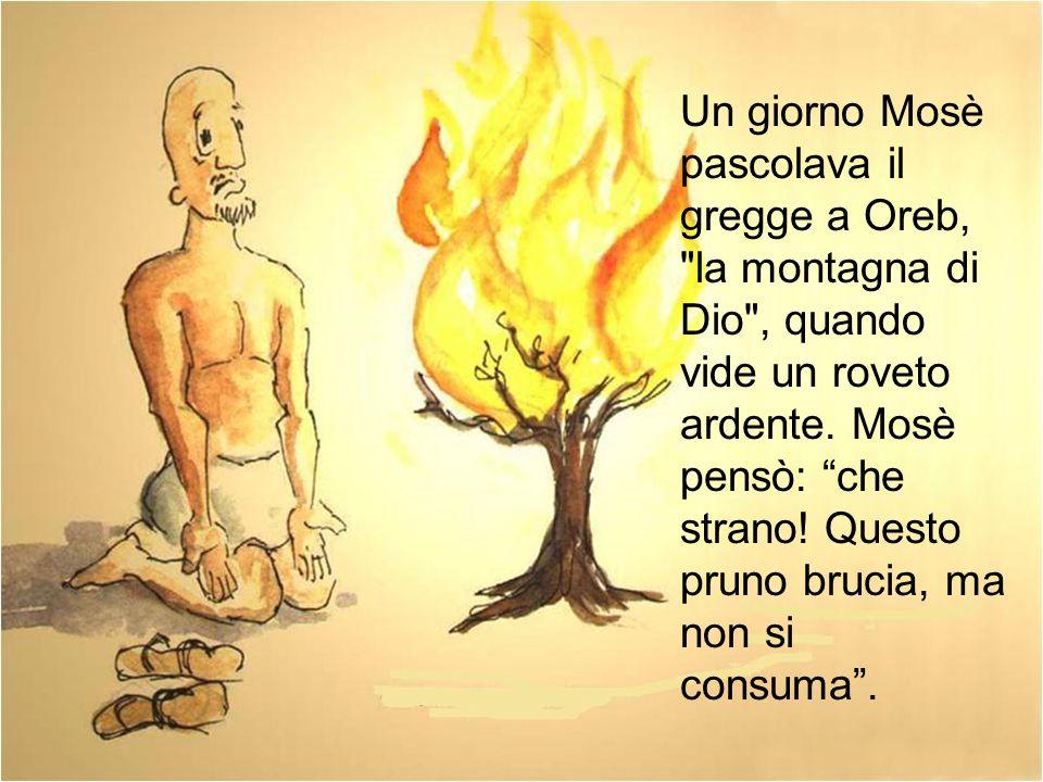 Un giorno Mosè pascolava il gregge a Oreb, la montagna di Dio , quando vide un roveto ardente.