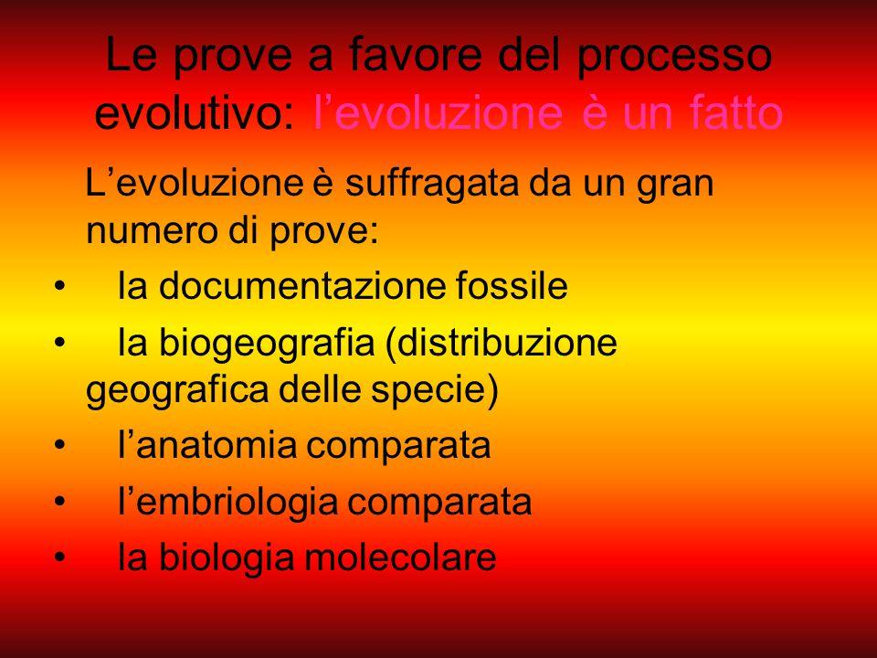 Le prove a favore del processo evolutivo: l'evoluzione è un fatto