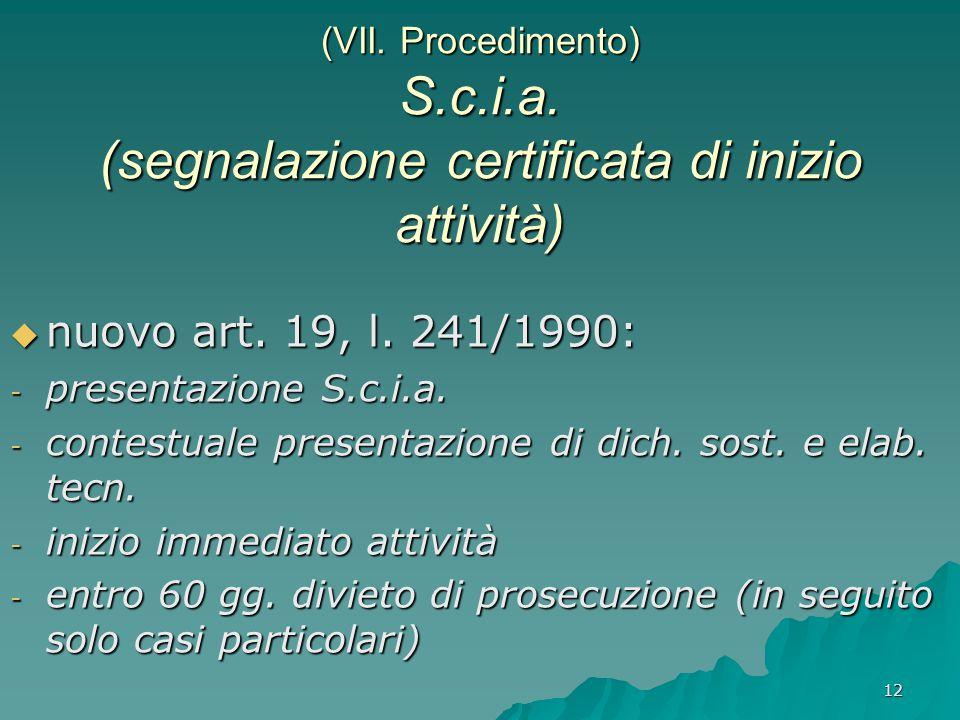 (VII. Procedimento) S. c. i. a
