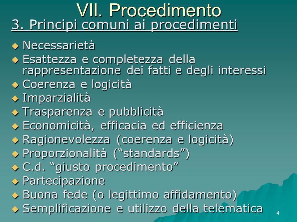 VII. Procedimento 3. Principi comuni ai procedimenti Necessarietà