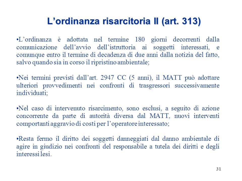 L'ordinanza risarcitoria II (art. 313)
