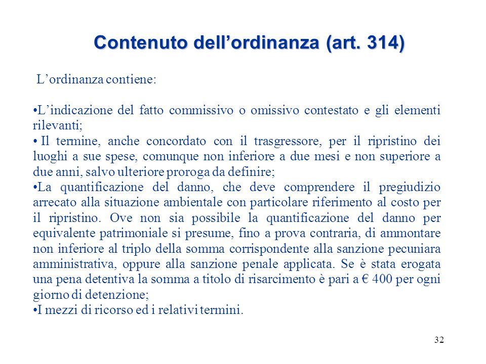 Contenuto dell'ordinanza (art. 314)