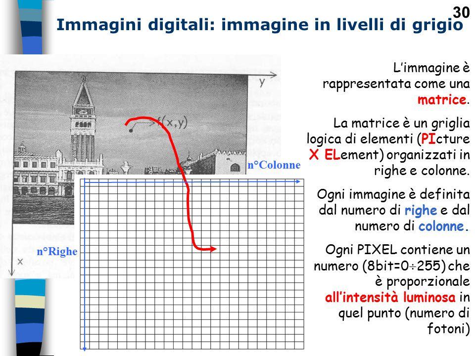 Immagini digitali: immagine in livelli di grigio