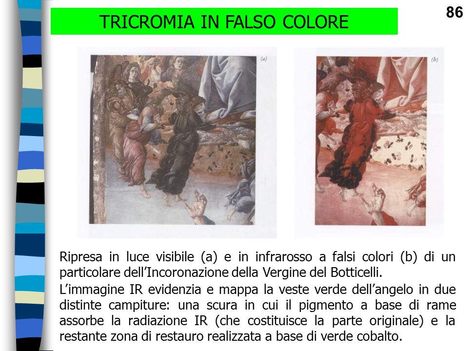 TRICROMIA IN FALSO COLORE