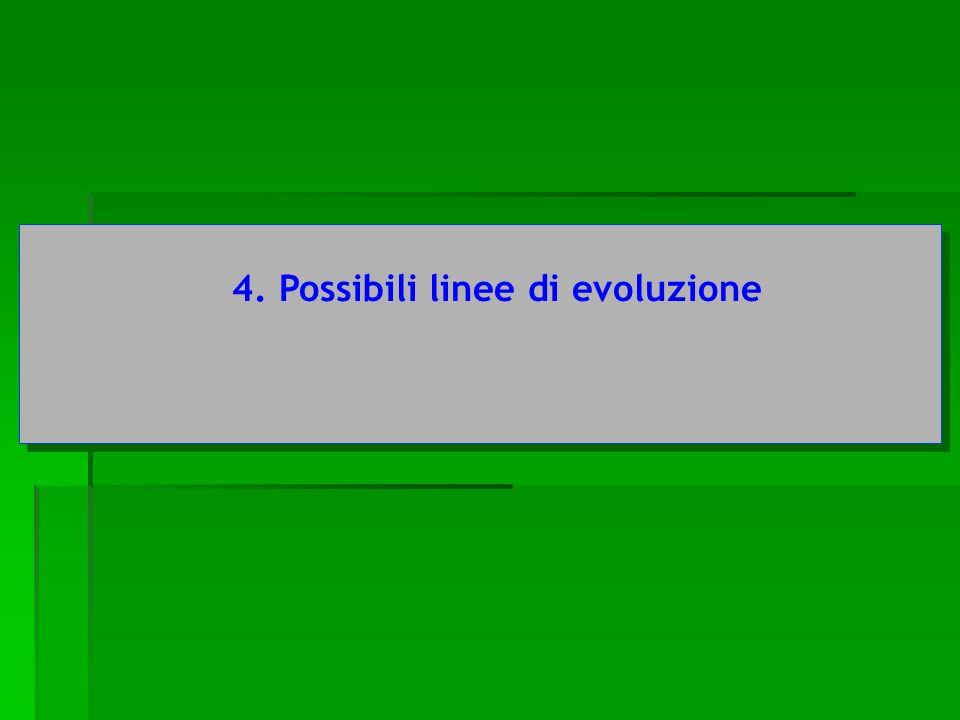 4. Possibili linee di evoluzione