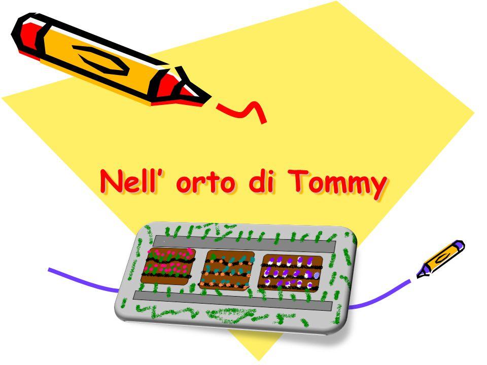 Nell' orto di Tommy