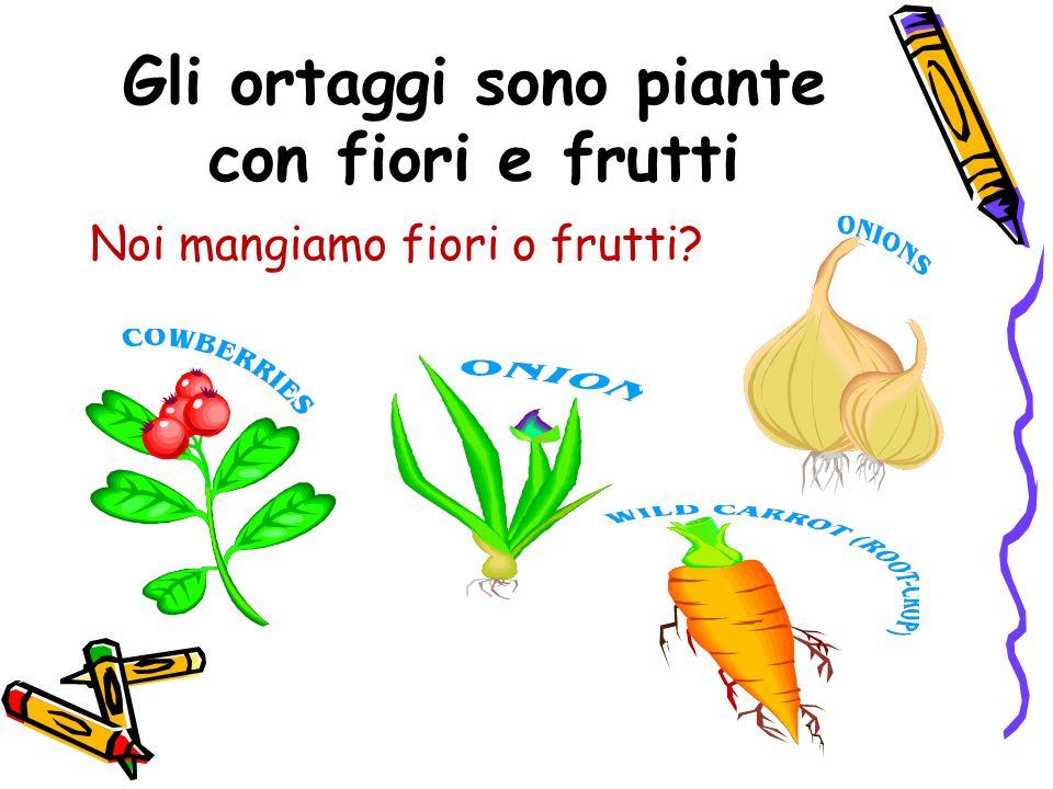 Gli ortaggi sono piante con fiori e frutti