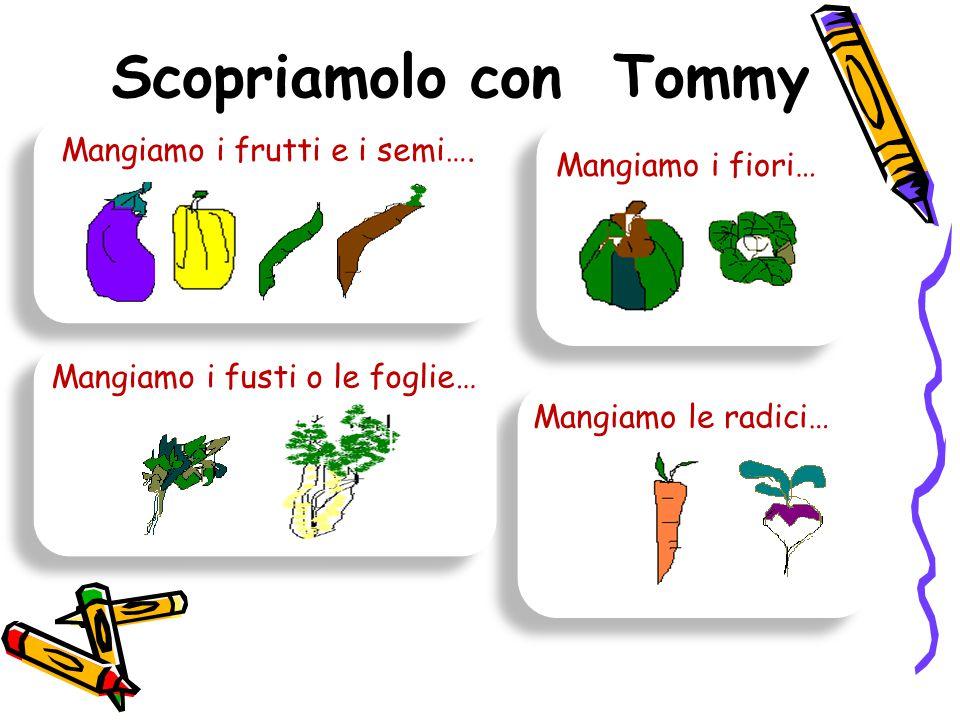 Scopriamolo con Tommy Mangiamo i frutti e i semi…. Mangiamo i fiori…