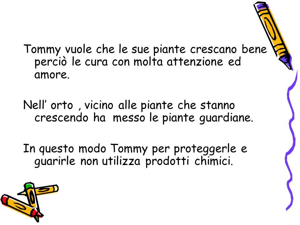 Tommy vuole che le sue piante crescano bene perciò le cura con molta attenzione ed amore.