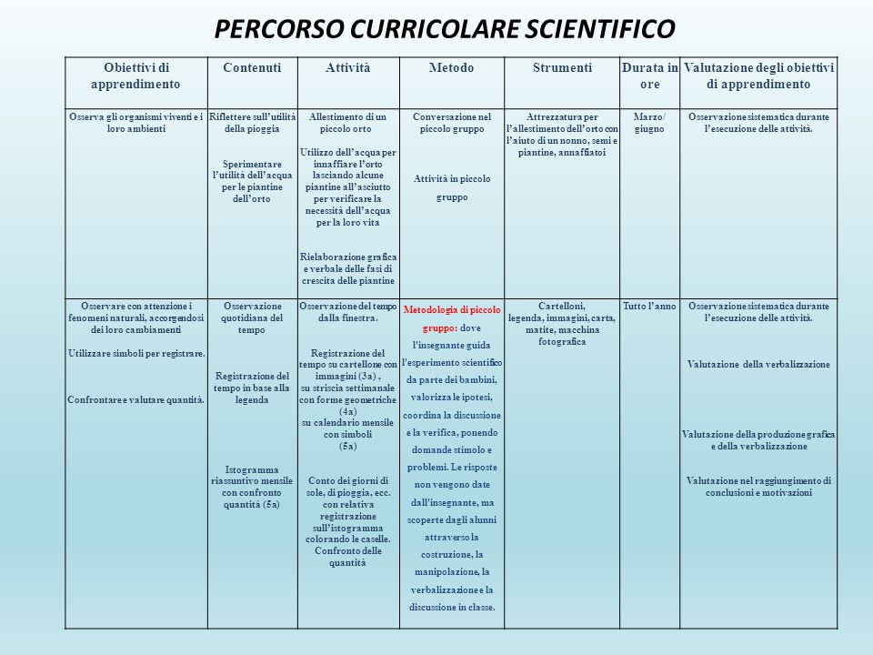 PERCORSO CURRICOLARE SCIENTIFICO