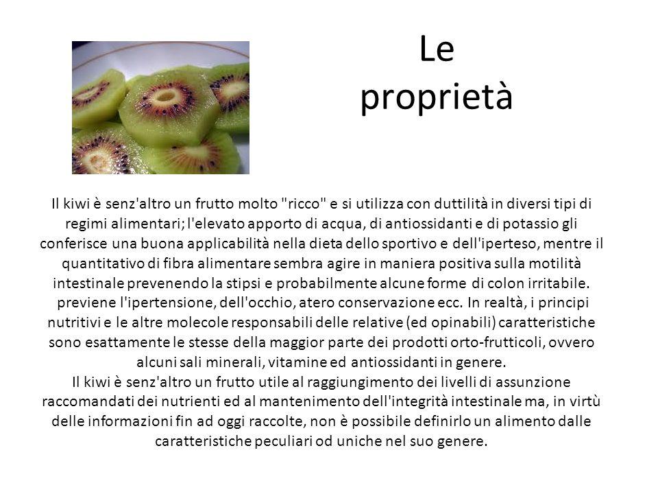 Le proprietà
