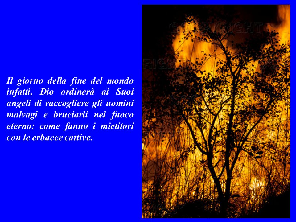 Il giorno della fine del mondo infatti, Dio ordinerà ai Suoi angeli di raccogliere gli uomini malvagi e bruciarli nel fuoco eterno: come fanno i mietitori con le erbacce cattive.