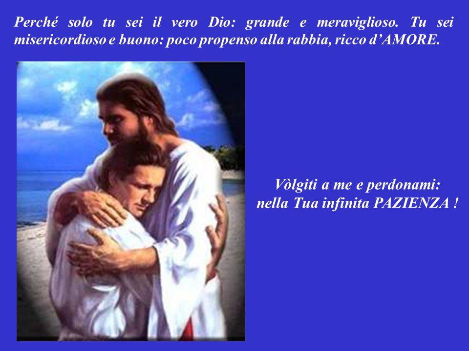 Vòlgiti a me e perdonami: nella Tua infinita PAZIENZA !