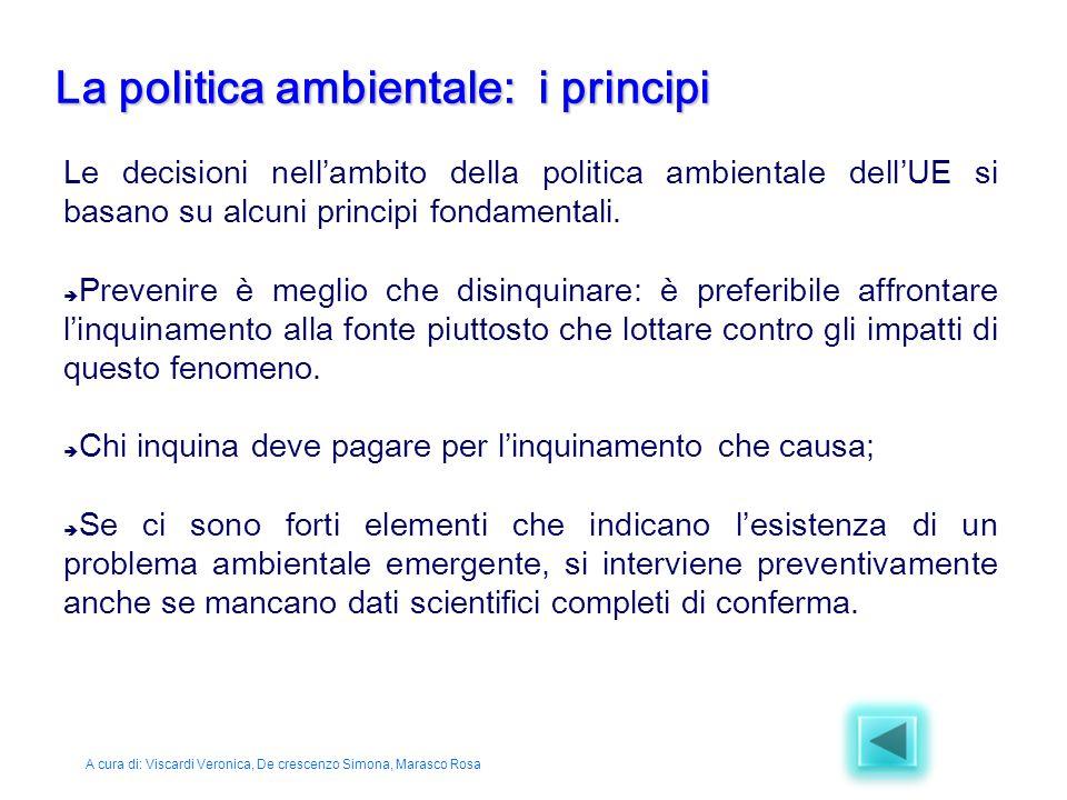 La politica ambientale: i principi