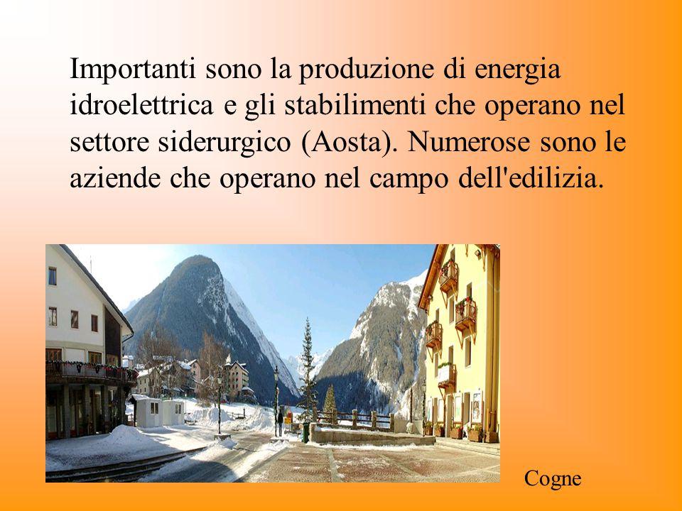 Importanti sono la produzione di energia idroelettrica e gli stabilimenti che operano nel settore siderurgico (Aosta). Numerose sono le aziende che operano nel campo dell edilizia.