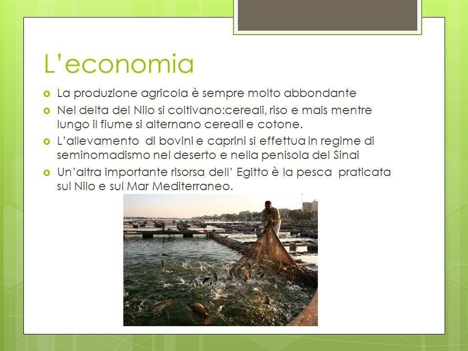 L'economia La produzione agricola è sempre molto abbondante