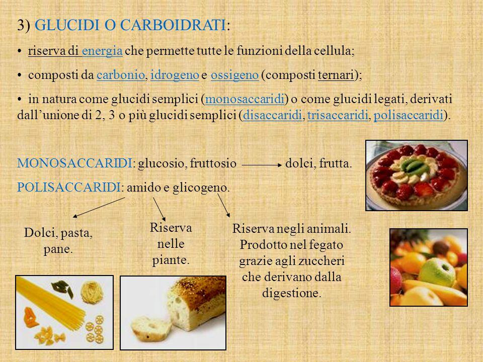 3) GLUCIDI O CARBOIDRATI: