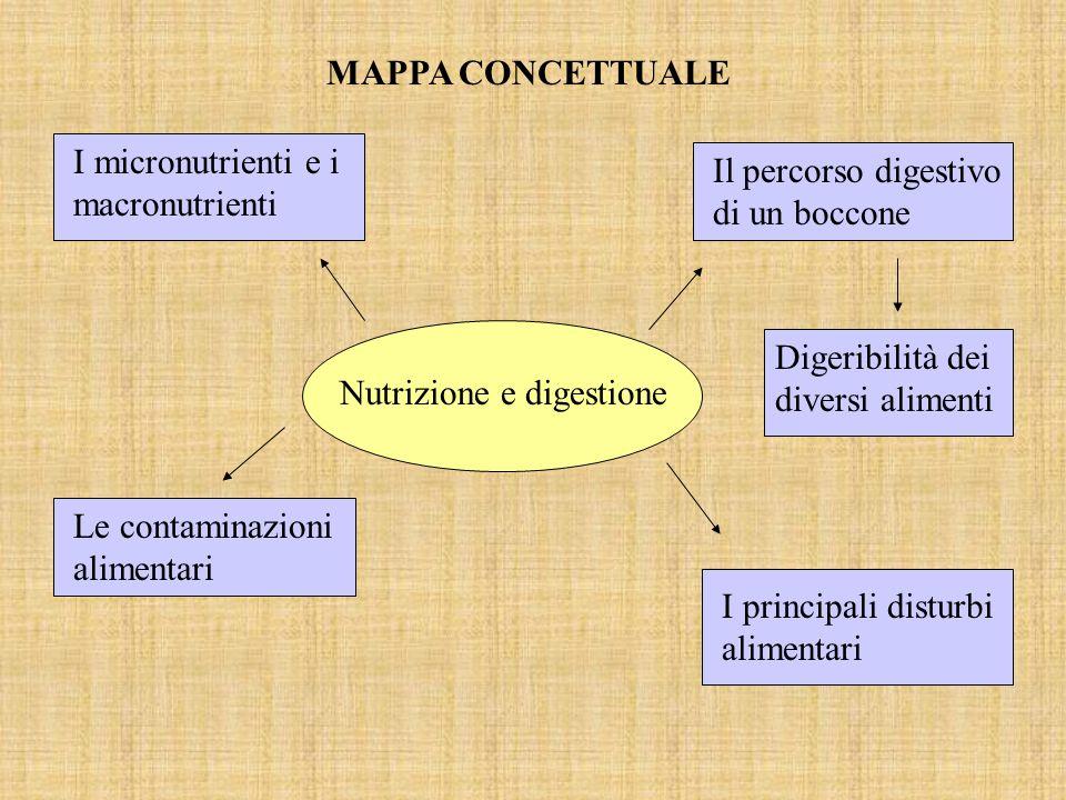 MAPPA CONCETTUALE I micronutrienti e i macronutrienti. Il percorso digestivo di un boccone. Nutrizione e digestione.