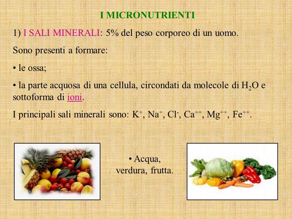 I MICRONUTRIENTI 1) I SALI MINERALI: 5% del peso corporeo di un uomo. Sono presenti a formare: le ossa;