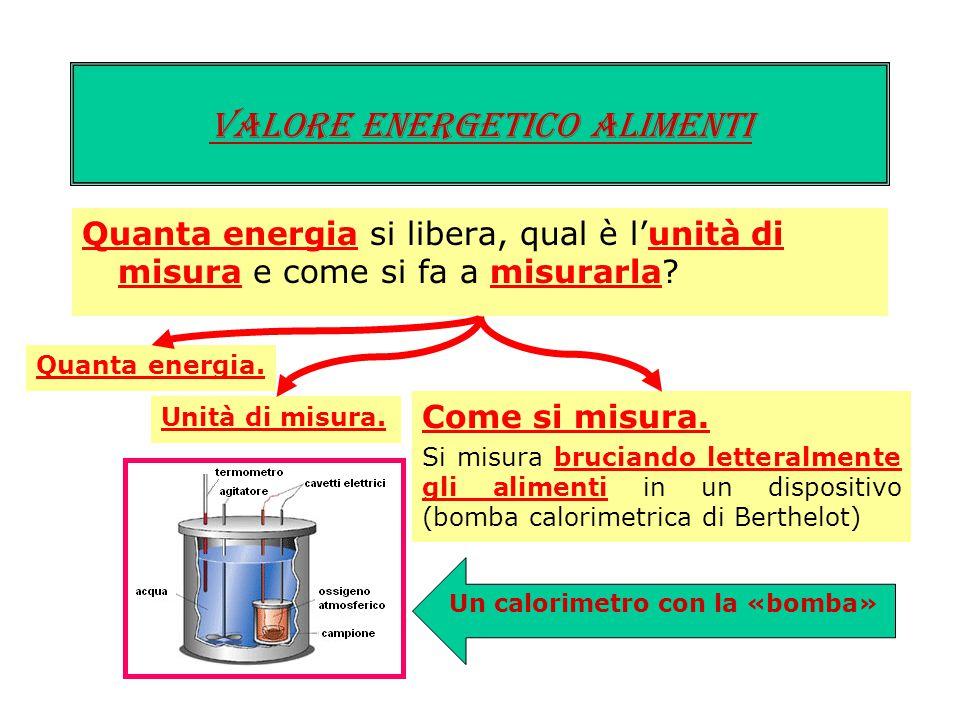 Valore energetico ALIMENTI