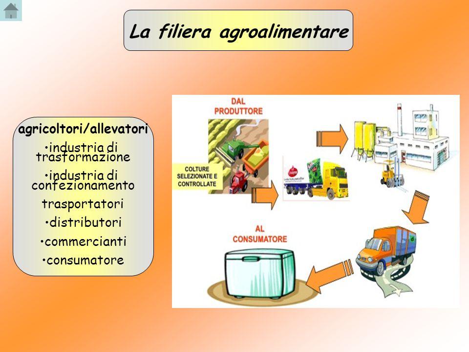 La filiera agroalimentare agricoltori/allevatori