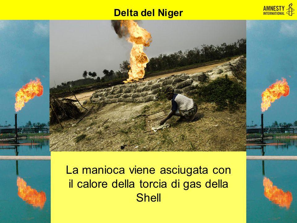 Delta del Niger La manioca viene asciugata con il calore della torcia di gas della Shell