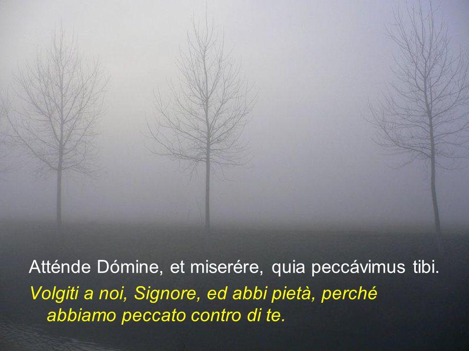 Atténde Dómine, et miserére, quia peccávimus tibi.