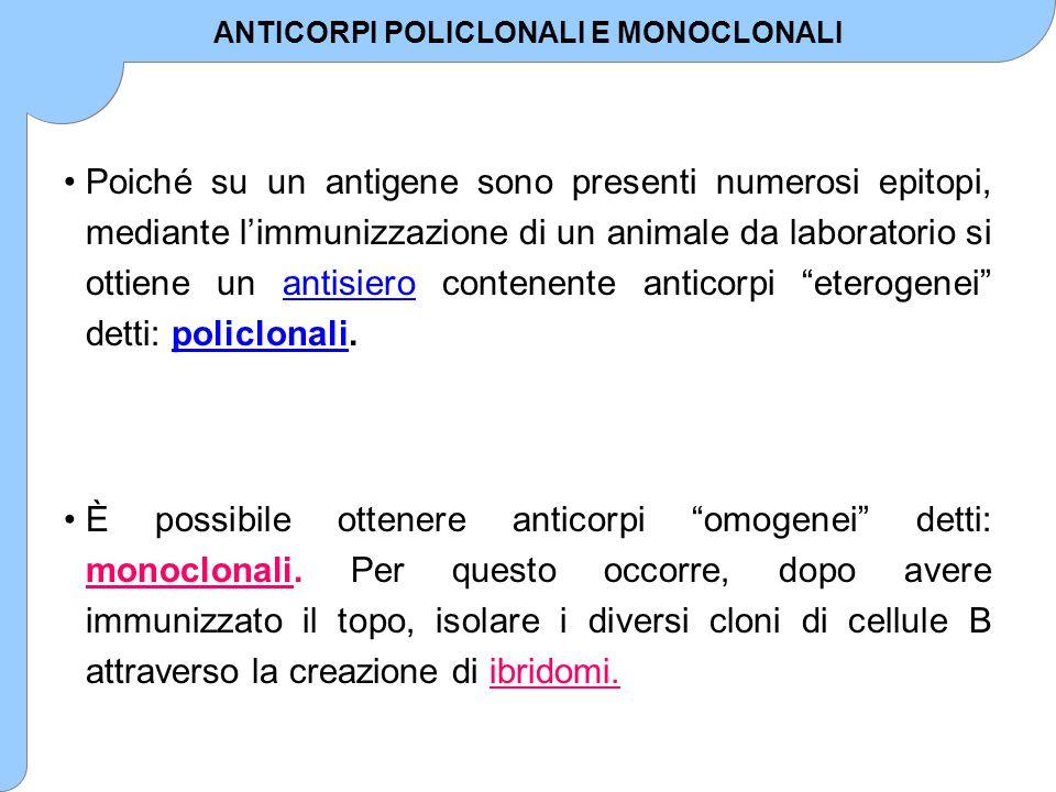 ANTICORPI POLICLONALI E MONOCLONALI
