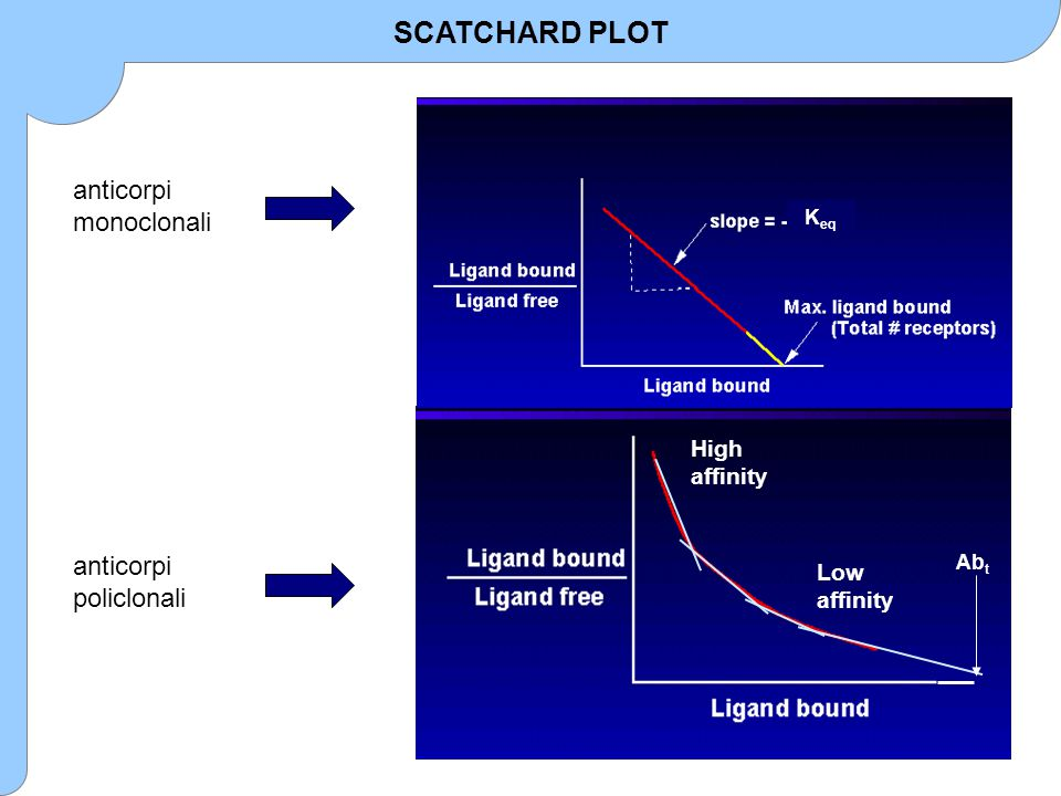 SCATCHARD PLOT anticorpi monoclonali anticorpi policlonali