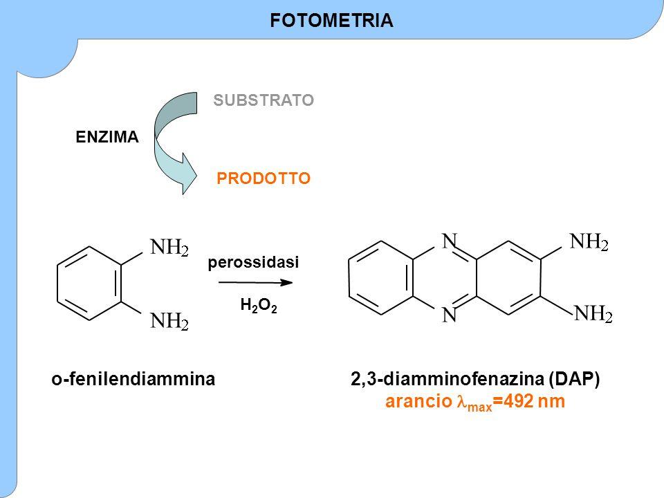 2,3-diamminofenazina (DAP)