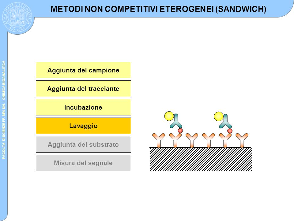 METODI NON COMPETITIVI ETEROGENEI (SANDWICH)