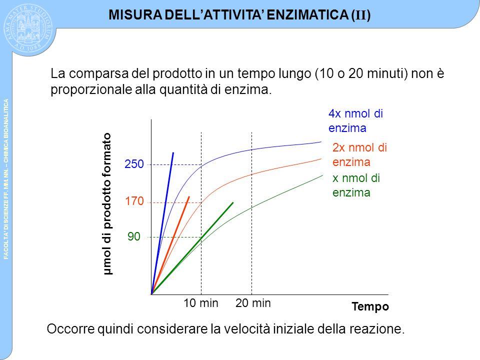 MISURA DELL'ATTIVITA' ENZIMATICA (II)