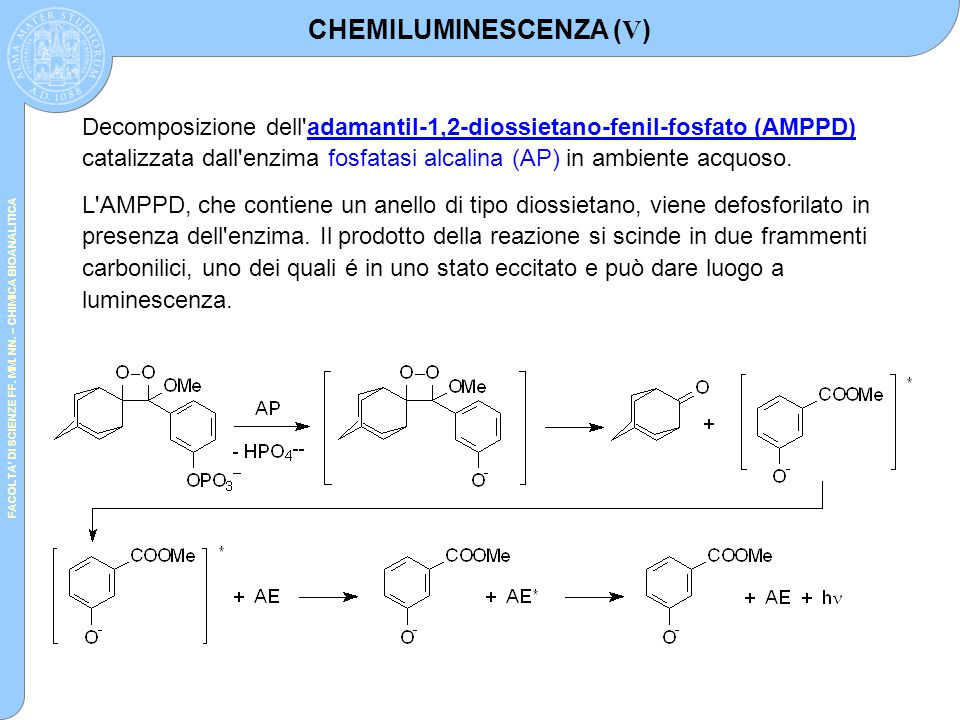 CHEMILUMINESCENZA (V)