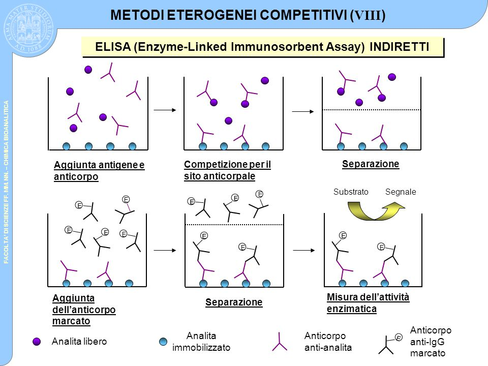 METODI ETEROGENEI COMPETITIVI (VIII)
