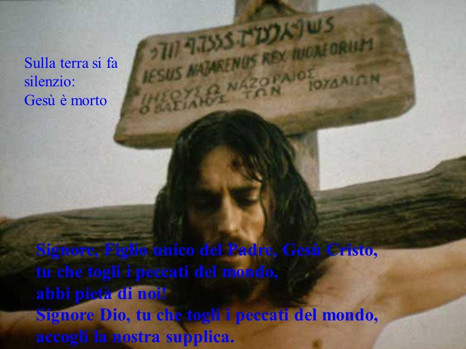 Sulla terra si fa silenzio: Gesù è morto