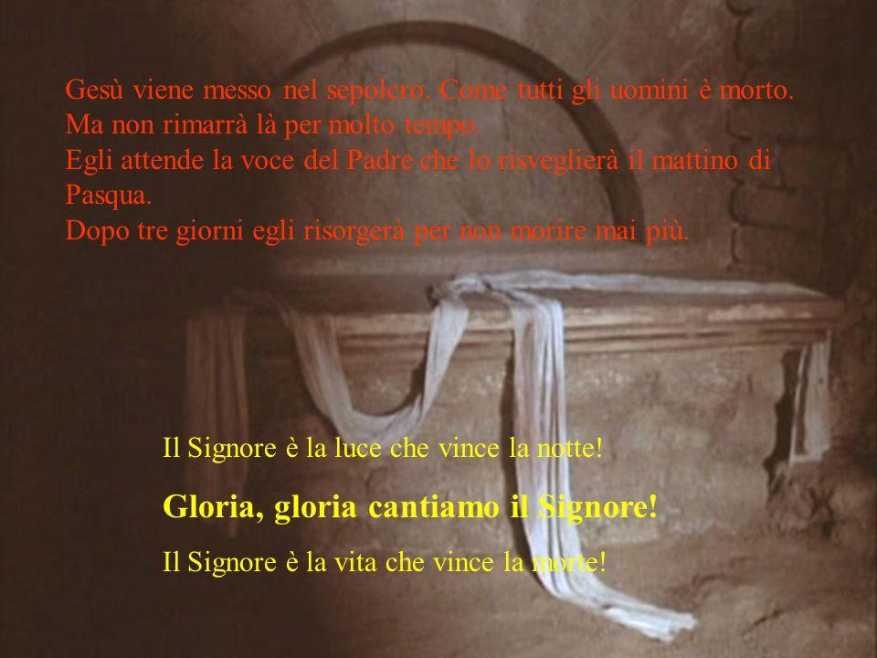 Gloria, gloria cantiamo il Signore!