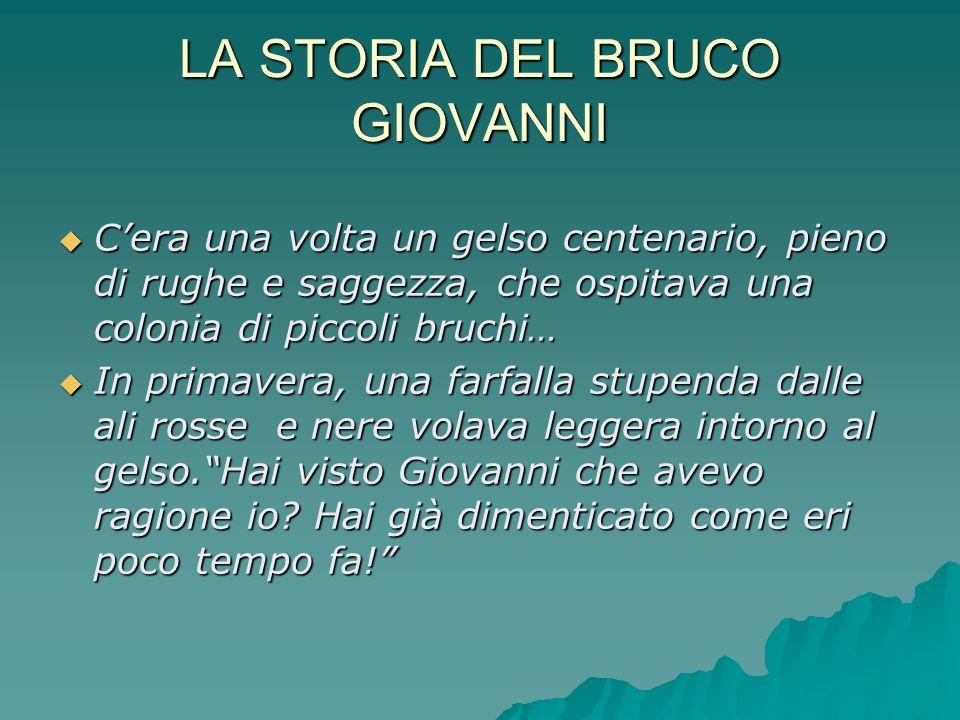 LA STORIA DEL BRUCO GIOVANNI