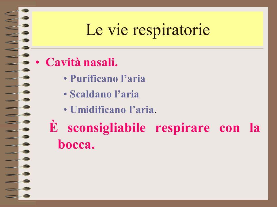 Le vie respiratorie È sconsigliabile respirare con la bocca.