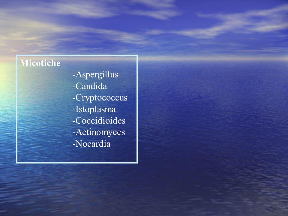 Micotiche -Aspergillus -Candida -Cryptococcus -Istoplasma -Coccidioides -Actinomyces -Nocardia