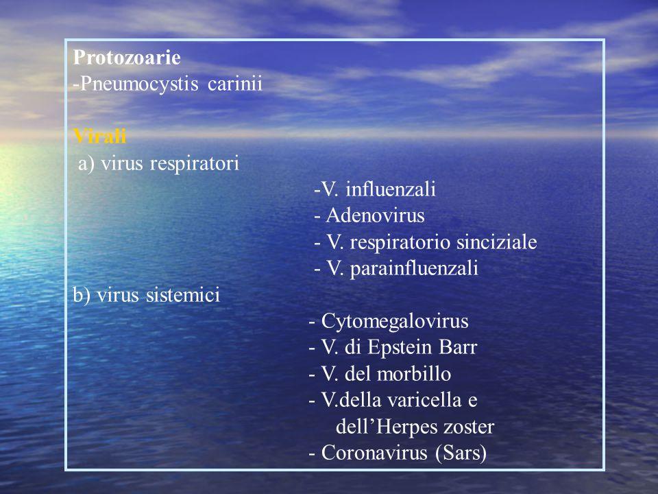 Protozoarie Pneumocystis carinii. Virali. a) virus respiratori. -V. influenzali. - Adenovirus. - V. respiratorio sinciziale.